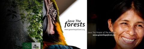 Save Amazon forest & Indigenous People